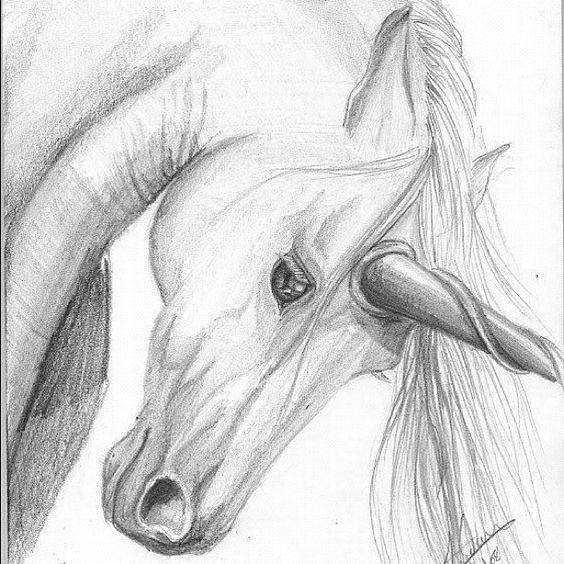 Las Mejores Imágenes De Unicornio Animadoskawaii 2018